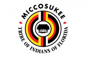 40th Anniversary Miccosukee Indian Arts & Crafts