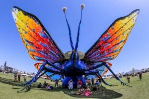 ButterflyFest 2015